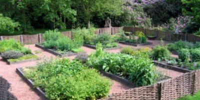 Herbs garden cover